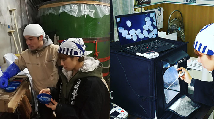 「AI-sake」プロジェクト実証実験